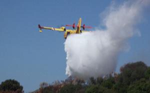 Incendies : Inquiétudes pour le massif de Verghellu