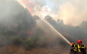 Casamaccioli : L'incendie progresse toujours. Plus de 130 hectares parcourus par les flammes