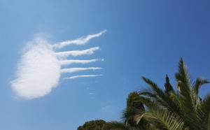 Méduse volante à Sant'Amggiu (Erika Bordeau)