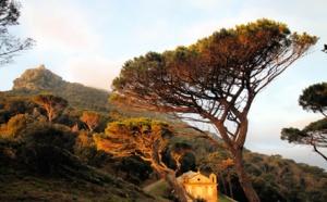 La photo du jour : la tour de Sénèque et Santa Lucia di Luri