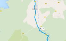 Tir à l'arc campagne : Le souvenir Ernest-Ludwig en forêt de Bonifatu
