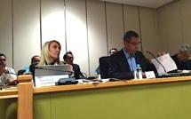 Bastia : Le Puntettu et l'espace Gaudin au cœur du débat du conseil municipal