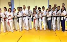 Corte : Stage de Taekwondo avec la championne Katia Parroche