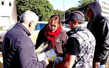Corse : La lutte contre le Cynips du châtaignier se poursuit