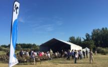 Furiani  : La musique a fêté la nature au parc de Fornacina