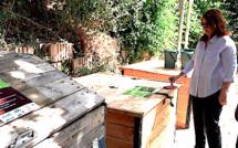 Bastia : Composteur partagé pour jardin partagé à Lupinu