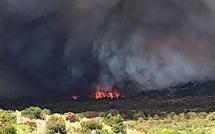 Bonifacio : Plus de 350 hectares détruits par les flammes
