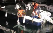 Deux requins dans le port de Propriano