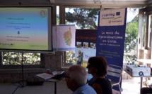 Le pescatourisme se développe en Corseavec Petra Patrimonia Corsica.