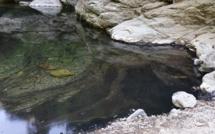 Vallée de Lota : La rivière de «Botte» volontairement polluée