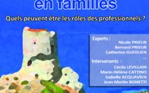 Deuxième carrefour clinique du centre hospitalier départementale de Csteluccio et du CECCOF:  « Pour bien grandir en familles, quels rôles pour les professionnels ? »