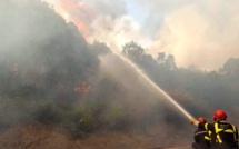 Casabianda : 3 500 mètres carrés de maquis brûlés dans une ancienne vigne