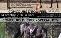 Concours d'Equifeel et de Trec dans la pinède de Calvi