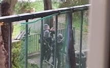 Lupino : L'auteur des coups de feu toujours retranché à la Cité aurore. Un des blessés est décédé