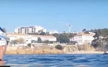 Thierrry Corbalan nage avec les dauphins dans le golfe d'Ajaccio