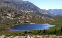 Montagne corse : L'Office de l'environnement étudie la sur-fréquentation du GR20