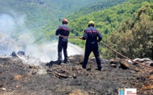 Alata : 1 500 m2 de petit maquis détruit par les flammes