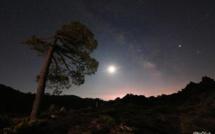 L'éclipse lunaire dans la forêt de l'Ospedale