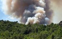 Incendies : 12 hectares déjà ravagés à Castellu-di-Rustinu