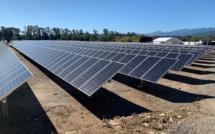 Giuncaggio : Corsica Sole inaugure une centrale photovoltaïque pouvant alimenter 3 500 personnes