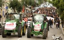 """VIDEO - Manifestation des agriculteurs à Ajaccio : """"nous sommes prêts à faire pression sur Bruxelles"""""""