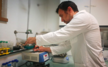 Alternatives aux pesticides : l'Université de Corse-CNRS, fer de lance de la recherche