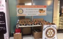 Les clémentines de l'espoir du Rotary Club reviennent ce samedi à Bastia