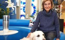 Apprendre aux enfants comment interagir avec les chiens : une nécessité vitale pour éviter les morsures