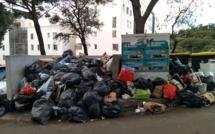 Tocc'à Voi. Les jolies poubelles de mon quartier ...