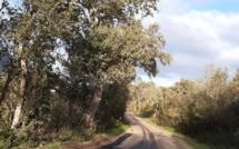 Rallye Portivechju Sud Corse: la spéciale de Tarabucetta annulée