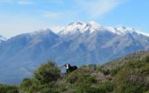 La météo du mardi 17 mars en Corse