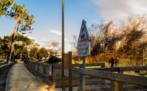 Plage, passerelle piétons en bois et stationnement dans la pinède de Calvi interdits