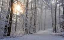Corse : Vigilance jaune neige-verglas mercredi et jeudi