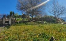 La météo du 28 Mars 2020 en Corse