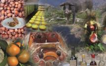 Confinement : et si on soutenait les agriculteurs corses en mangeant local ?