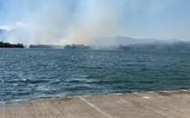 Plaine orientale : une vingtaine d'hectares détruits par le feu