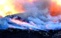 Incendies de forêts : la Balagne retient son souffle et se prépare