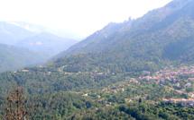 La Corse, sentinelle de l'environnement en Méditerranée !