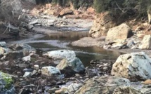 """La Haute-Corse placée en vigilance """"sécheresse"""""""