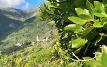 La météo du vendredi 18 septembre 2020 en Corse