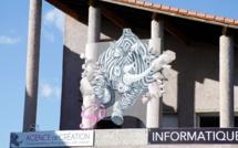 Le  FreeFriday de So-Corse pour soutenir l'entrepreneuriat insulaire