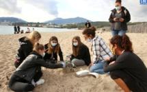 Ajaccio : Les élèves du LEP Finosello examinent le Ricanto à la loupe