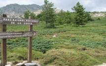 Le parc naturel régional devant la chambre des comptes