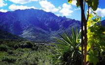 La météo du Jeudi 21 janvier 2021 en Corse