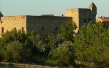 Assemblée de Corse : Le site d'Aléria sera-t-il réhabilité ?