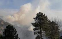 Plusieurs feux de forêt se déclarent en Haute-Corse