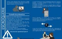 Cyber escroqueries au matériel de travaux publics : 8 plaintes déposées depuis le 1er janvier en Corse