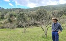 PORTRAIT -  Bruno Tomasi, l'explorateur agricole cortenais qui a fait le choix de la permaculture
