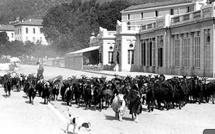 """""""Tomasi, 100 ans de photos Corses"""" : Aux enchères sur internet"""