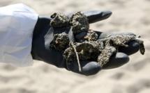 Pollution au large de la Corse : des galettes d'hydrocarbures retrouvées sur plusieurs plages